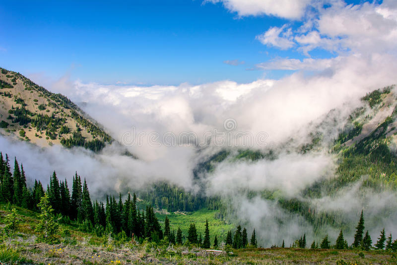 Huracán Ridge In las montañas del parque nacional olímpico, estado de Washington fotografía de archivo libre de regalías