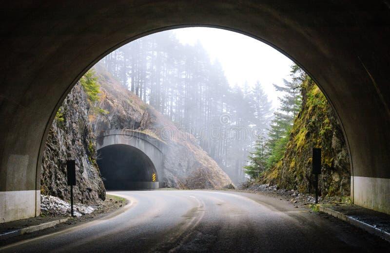 Huracán Ridge, parque nacional olímpico fotografía de archivo libre de regalías