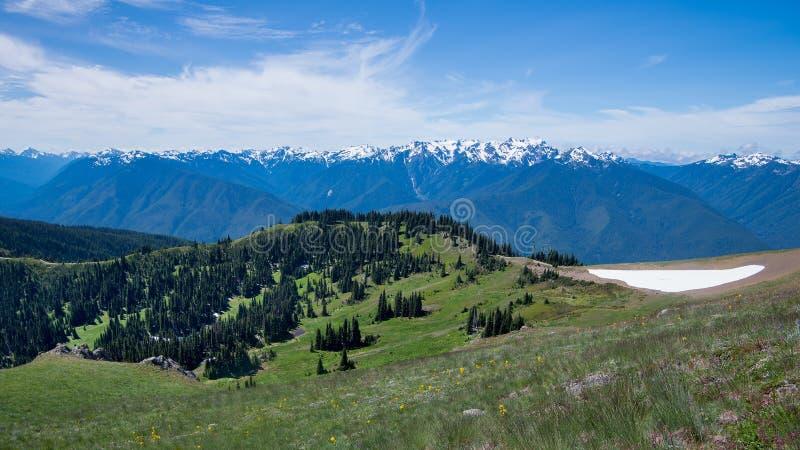 Huracán Ridge, parque nacional olímpico, WA fotografía de archivo libre de regalías
