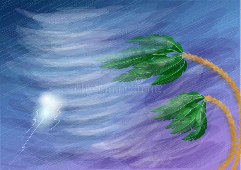 Huracán y palma libre illustration