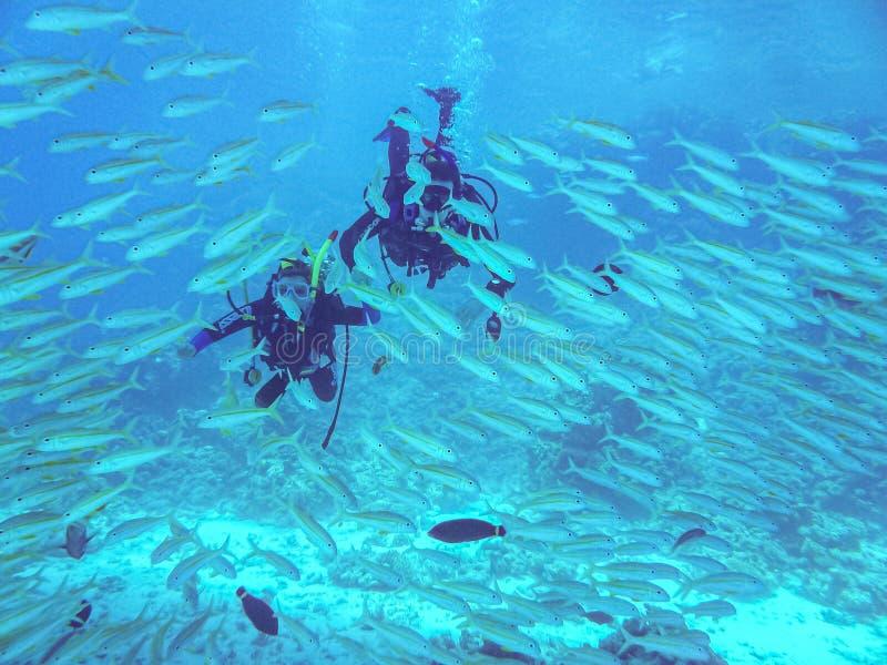 Hurghada, Ägypten - 20. April 2009 Sporttauchenpaare, die zwischen Fischen im Roten Meer schwimmen stockbild