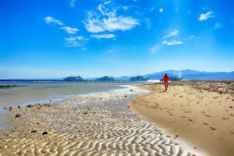 Hurghada, Египет, январь: Красивая лагуна Красного Моря стоковая фотография
