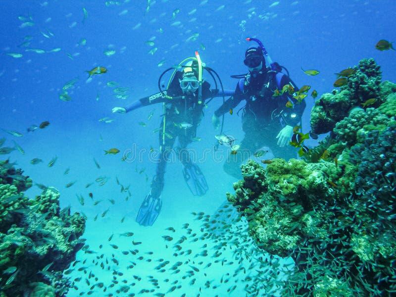 Hurghada, Egipto - 20 de abril de 2009 Pares del buceo con escafandra que nadan entre los pescados en el Mar Rojo foto de archivo