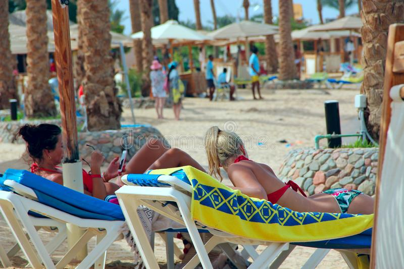 Women tourists lie on chaise longues while relaxing at tropical resort royalty free stock image