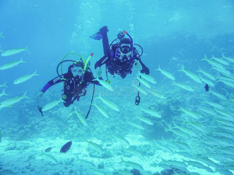 Hurghada Egypten - April 20, 2009 Simning för par för dykapparatdykning mellan fisken i Röda havet royaltyfri fotografi