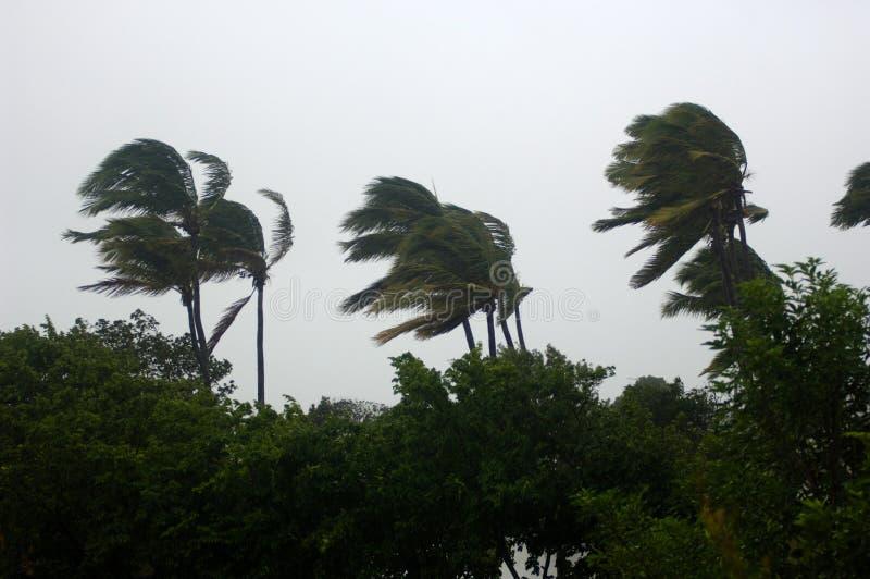 Hurricane 1 royalty free stock image
