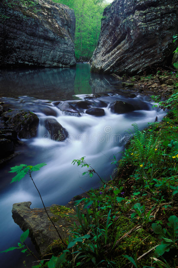 Hurricane Creek, Ozark Mountains, Arkansas. Deep in the Ozark Mountains of Arkansas lies some of the most fantastic scenery in the Central United States. These royalty free stock photo
