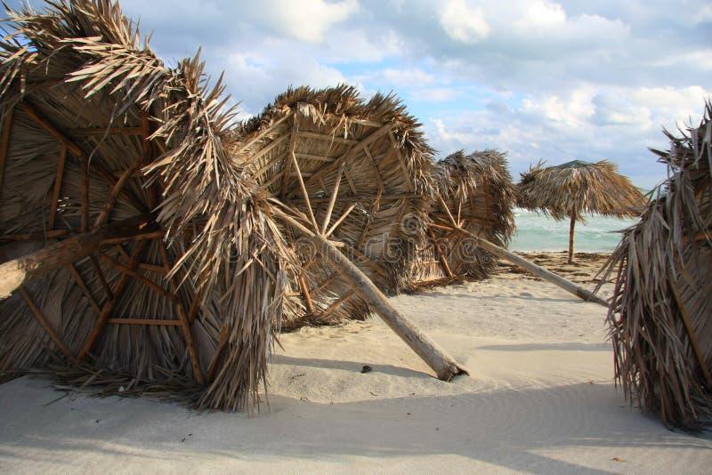 Hurricane damage stock image