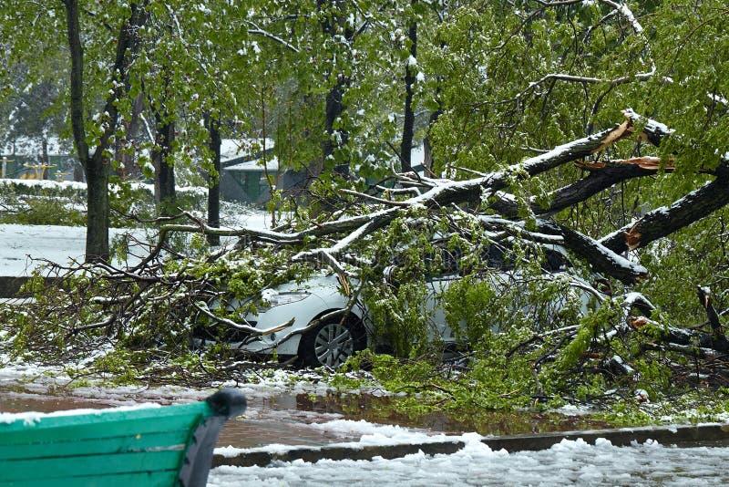 Hurricane-damaged car. Snowfall in Moldova. Hurricane-damaged car royalty free stock photos