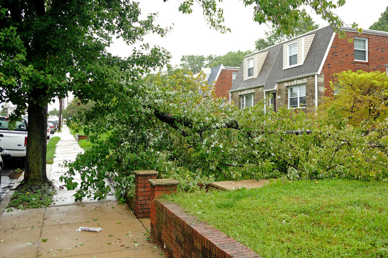 Hurricane Irene aftermath in the Philadelphia area. PHILADELPHIA - AUGUST 28: A large tree limb rests across a sidewalk and in a front yard after being taken royalty free stock image