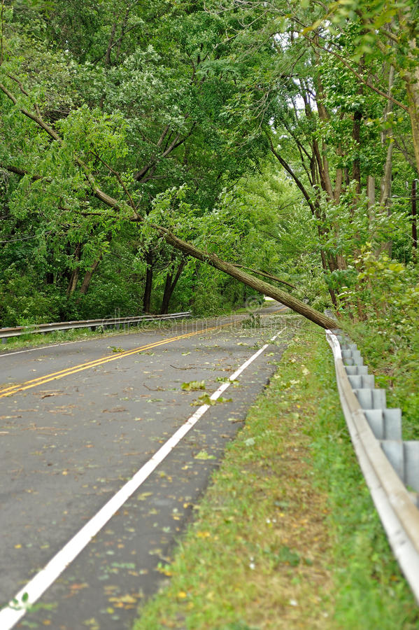 Hurricane Irene aftermath in the Philadelphia area. BENSALEM, PA - AUGUST 28: State Road is closed by several fallen trees that rest precariously over the stock image