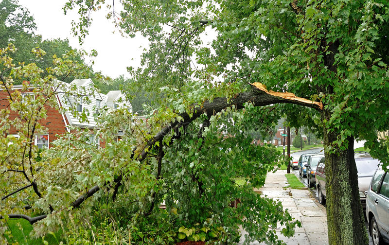 Hurricane Irene aftermath in the Philadelphia area. PHILADELPHIA - AUGUST 28: A large tree limb rests across a sidewalk and in a front yard after being taken stock photo