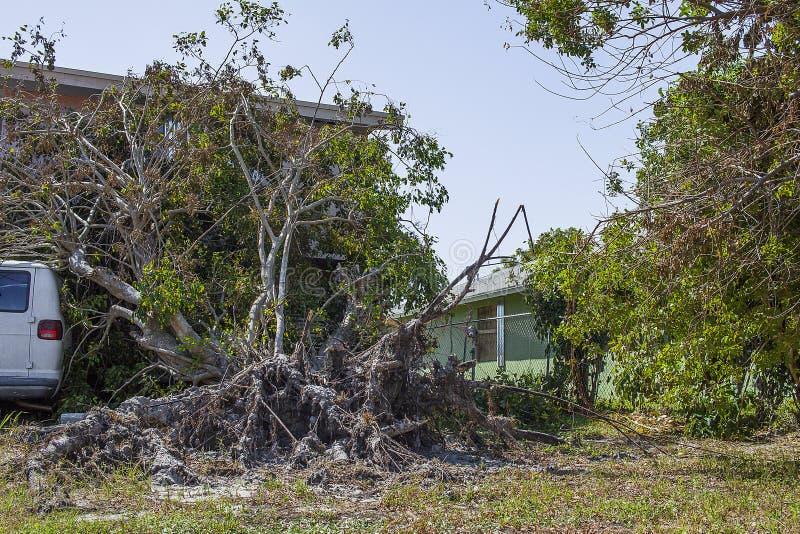 Hurricane Irma Damage stock images