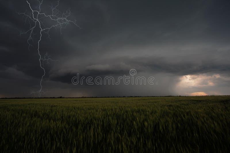 Hurrikan stockfoto