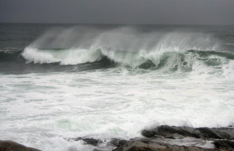 Hurrikan-Graf-Wellen stockfotos