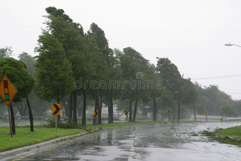 Hurrikan Gustav stockfoto