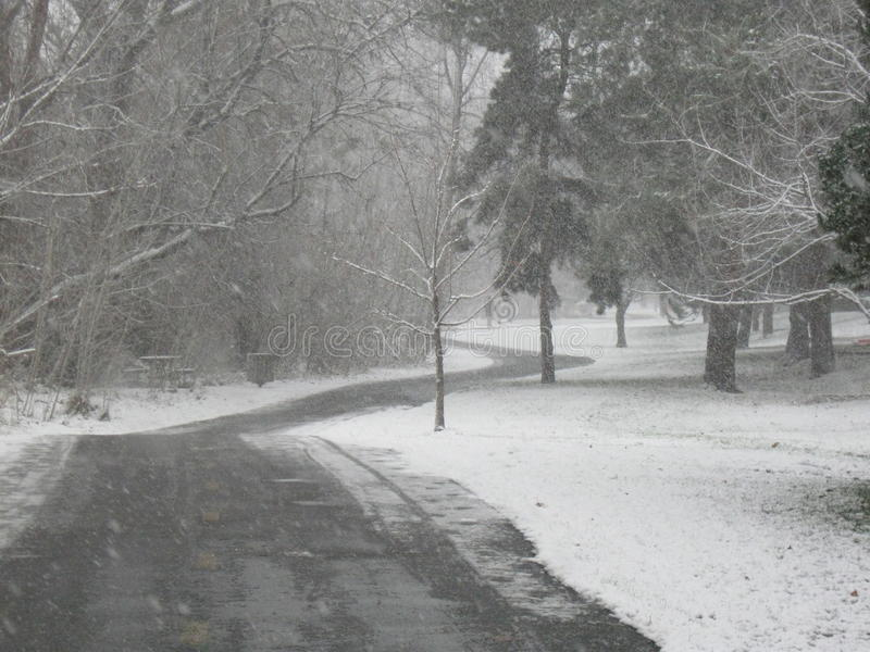Download Hurrying In A Snowstorm On The Greenbelt Boise Idaho Stock Photo - Image of bare, hurries: 81129092