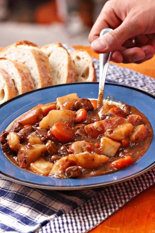 hurtig stew för nötkött arkivfoto