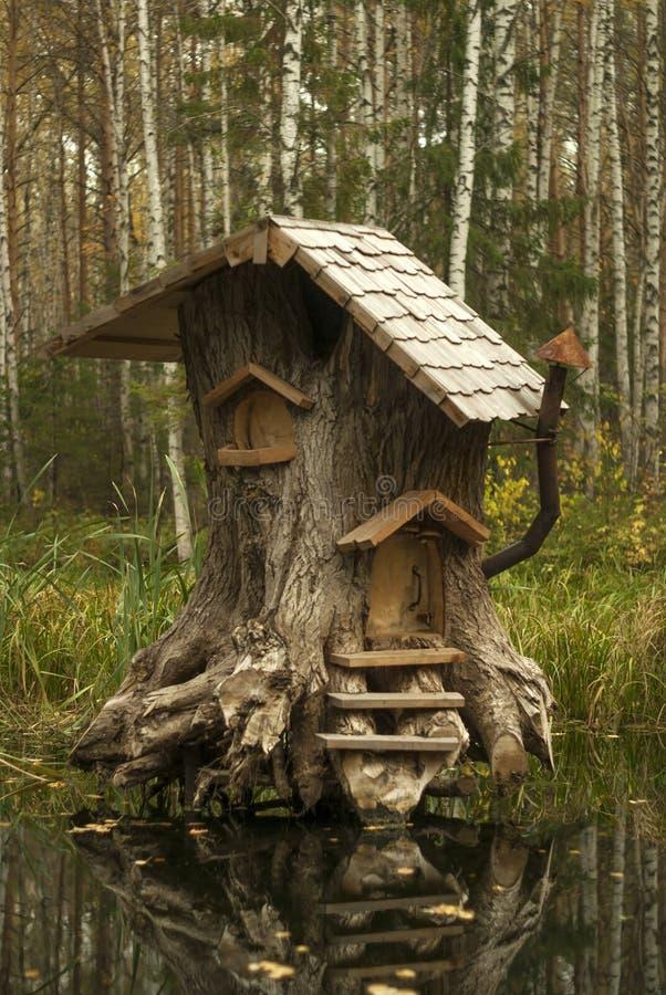 Hus av sagolika varelser i träsket royaltyfria foton