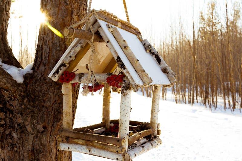 Hus för fåglarna fotografering för bildbyråer