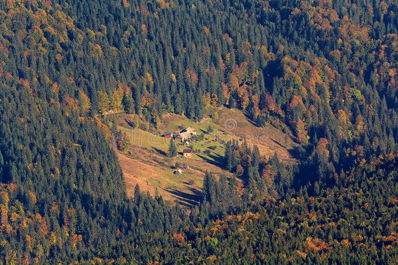 Hus i ängen på en skogsbevuxen backe royaltyfria foton