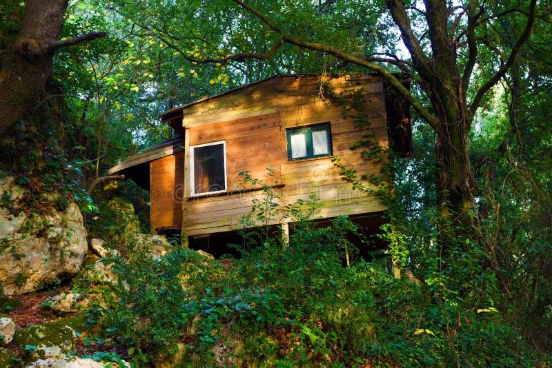 Hus i skogen royaltyfri bild
