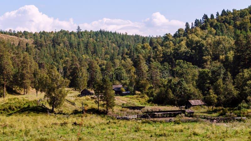 Hus i skogen bland bergen av Bashkiria royaltyfria foton