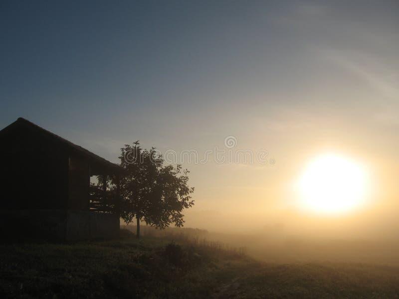 Hus och sol