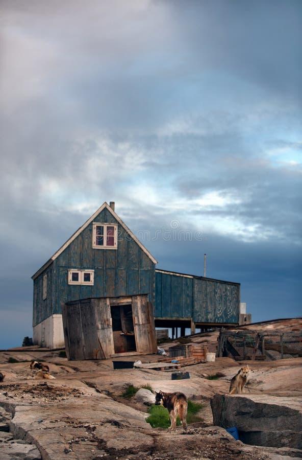 Hus på den steniga kusten och hundkapplöpningen Grönlandhundkapplöpning som vilar i den Rodebay bosättningen Den skrovliga Grönla arkivfoton