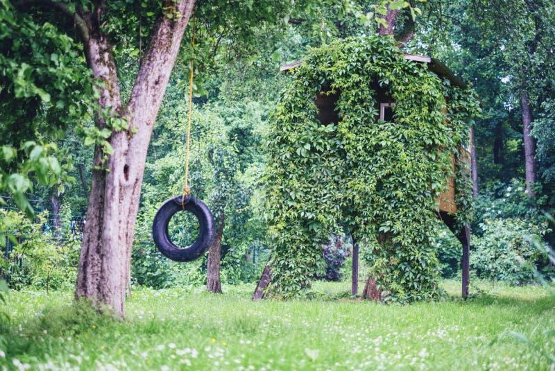 Hus på tree fotografering för bildbyråer