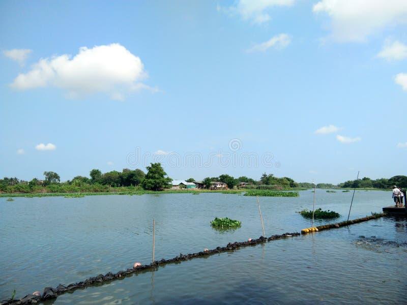 Hus trädgård, linje gräns på flodstranden på lantligt i Thailand royaltyfri foto