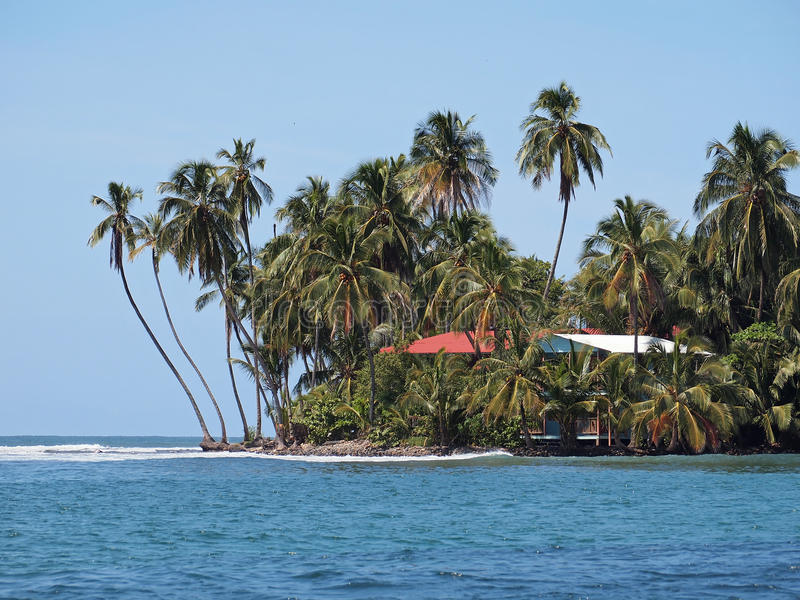 Hus vid havet med kokosnötpalmträd arkivfoton