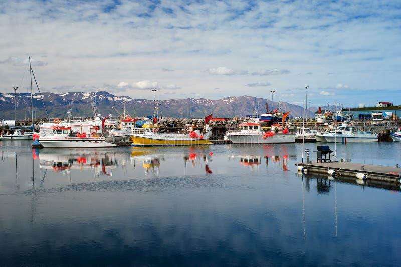 Husavik,冰岛- 2008年7月:港口 库存图片