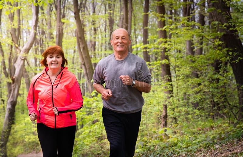 Husbanf και σύζυγος που φορούν sportswear και που τρέχουν στο δάσος στοκ εικόνα