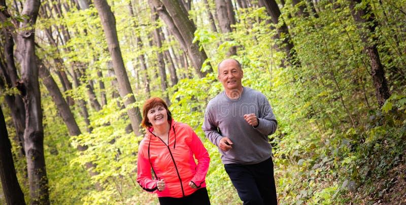 Husbanf και σύζυγος που φορούν sportswear και που τρέχουν στο δάσος στοκ φωτογραφίες με δικαίωμα ελεύθερης χρήσης