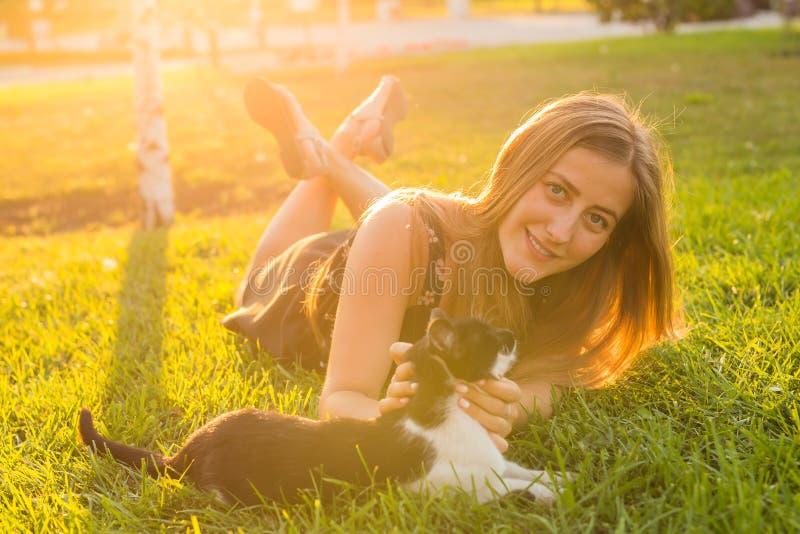 Husdjur och ägarebegrepp - flicka som spelar med en katt i gräset royaltyfri fotografi