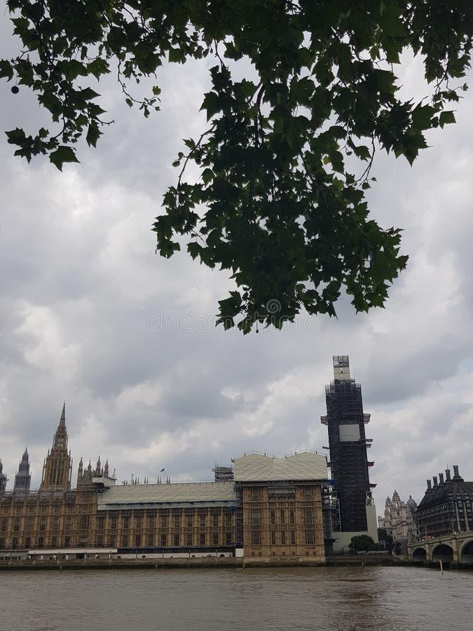 Husen av parlamentet London med träd royaltyfri bild