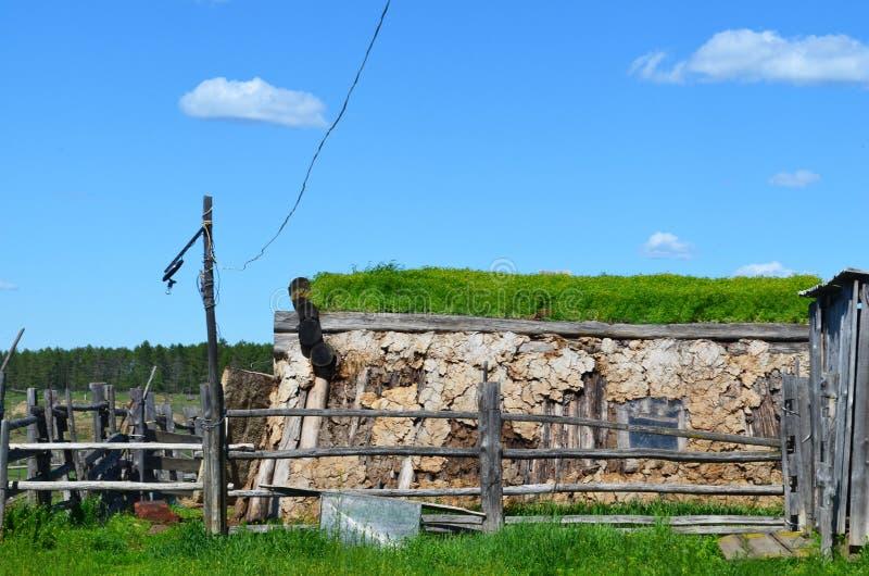 Huset av kor i vinter royaltyfria foton