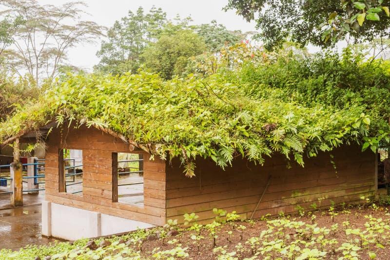 Huset i ecologelantgård kallade Rancho Margot royaltyfri bild