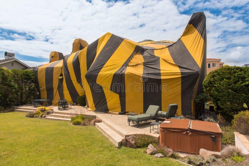 Huset täckas av tältet för rökning royaltyfri foto