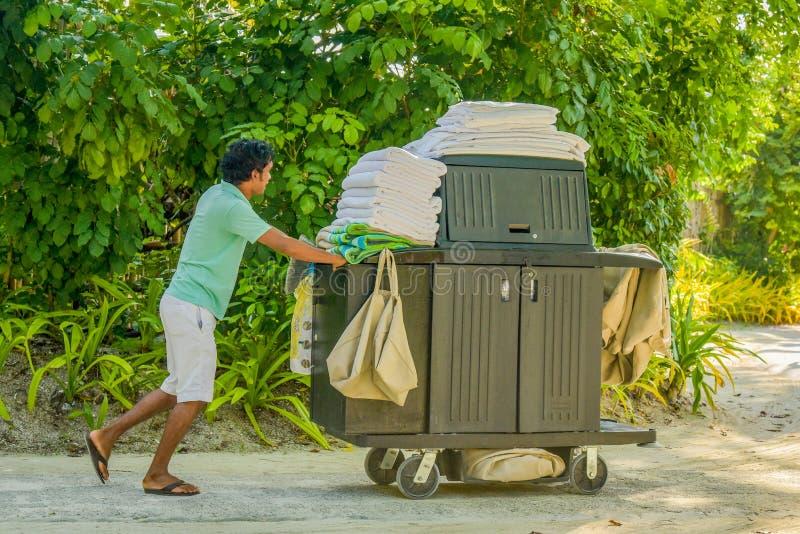 Hushållningarbetare i likformign som skjuter vagnen med rengörande hjälpmedel royaltyfri foto