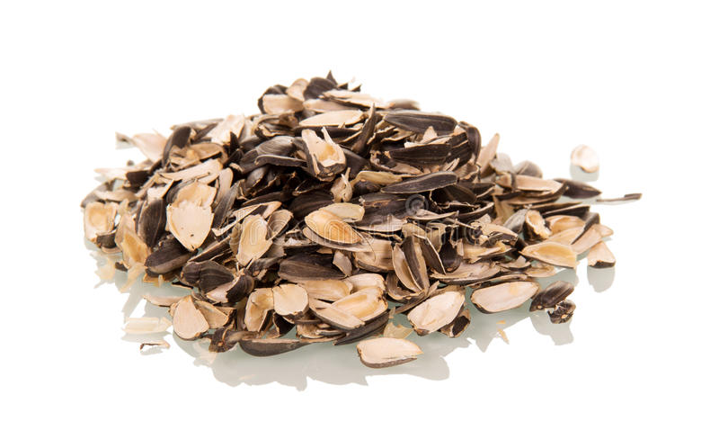 Husk sunflower seeds isolated on white. Background royalty free stock image