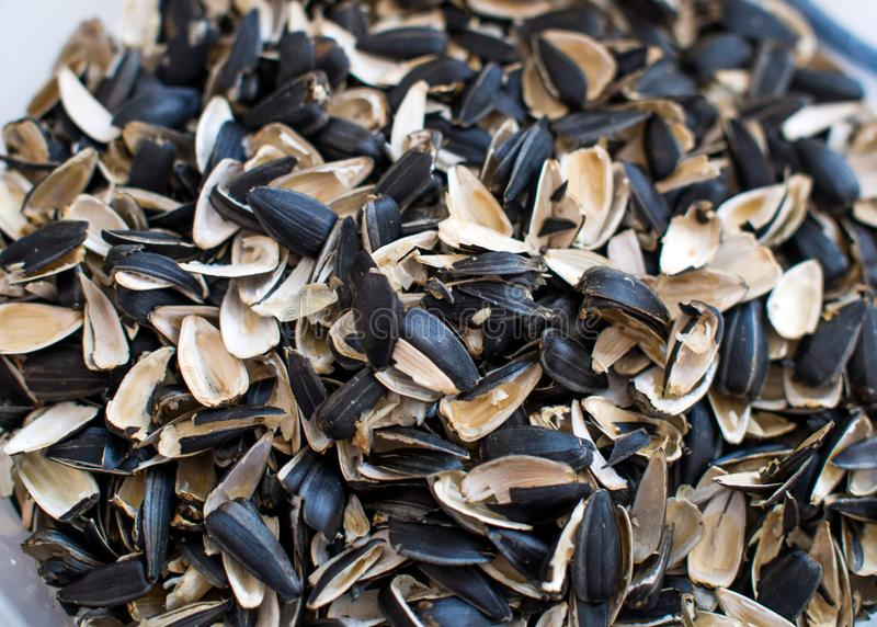 Husk from sunflower seeds piled a handful.  stock image