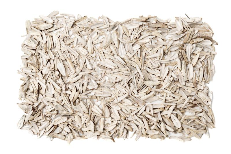 Husk of white roasted sunflower seeds with spices and salt on white background top view.  royalty free stock photo
