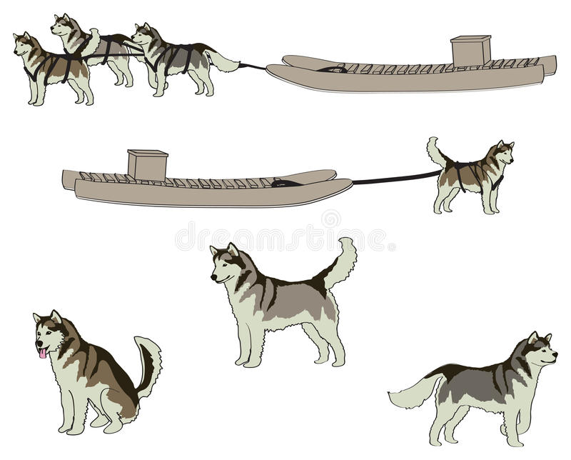 Huskies och Komatik stock illustrationer