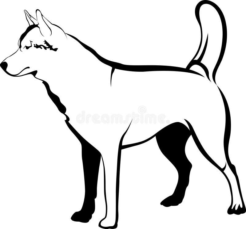 huskies Razas del perro de los perros esquimales Retrato de un perro casero Un favorito de stock de ilustración