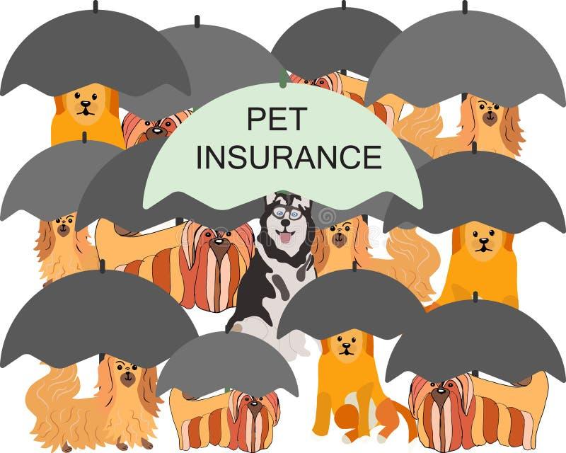 Huskithundar under paraply med anteckning om husdjursförsäkring vektor illustrationer