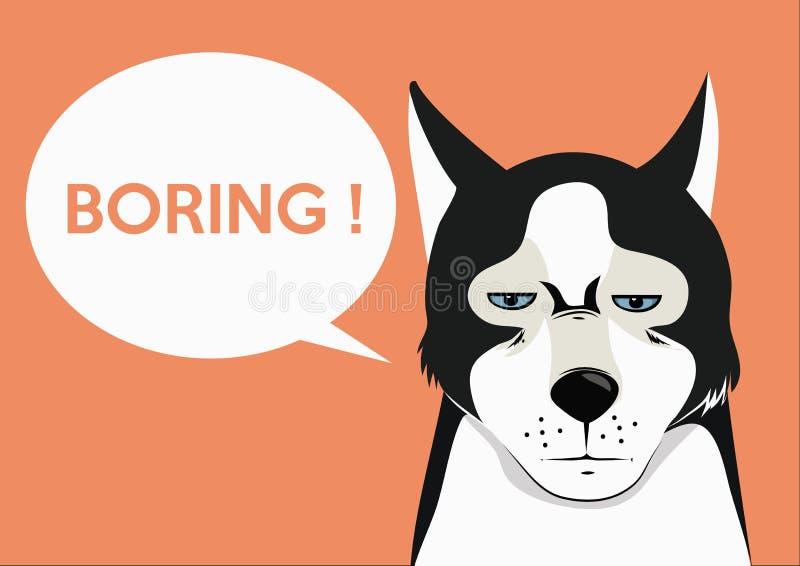 Husky - alesando fotografia stock