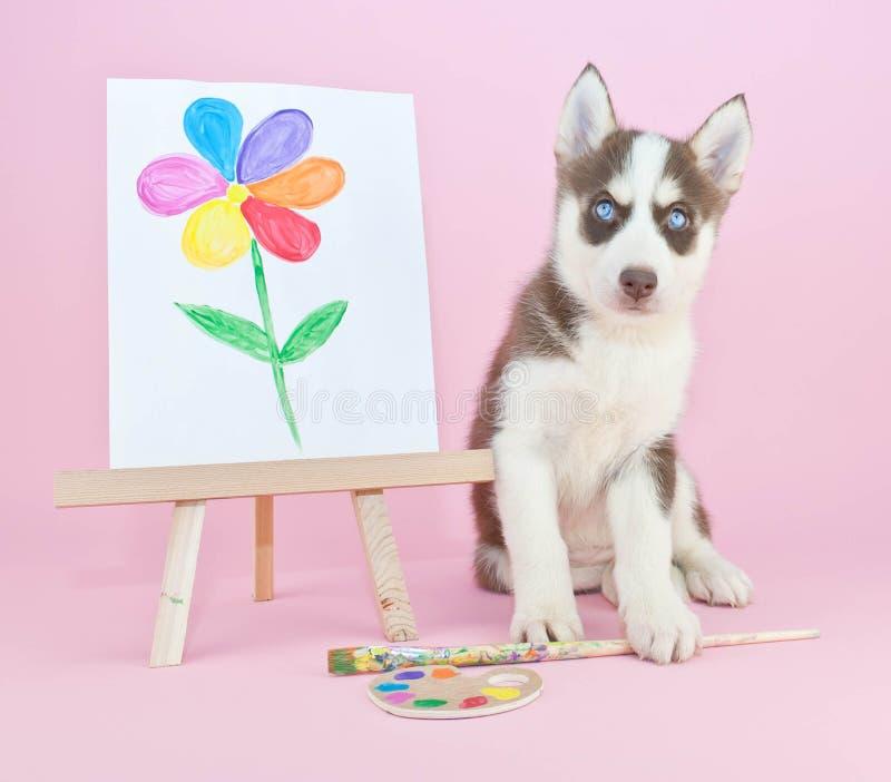 Husky Artist stock photo