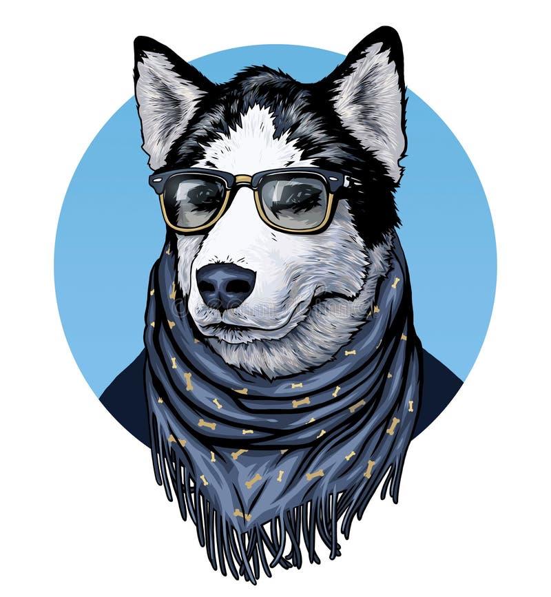 husky Bärande anblickar och halsduk för hund Illustration för diagram för Ð-¡ olor royaltyfri illustrationer